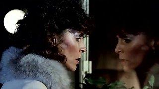 Taboo III 1984