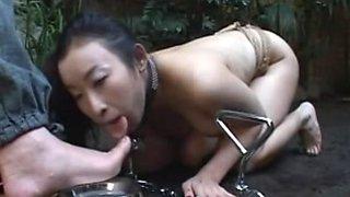 Japanese video 258 BDSM pet The Human slave