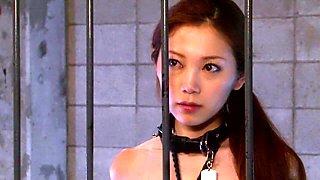 Asami Ogawa in Female Slave Teacher 4 part 2.4